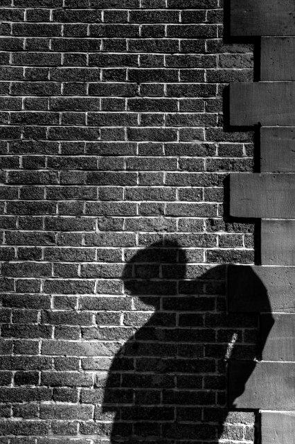 Der Schatten (dänisch: Skyggen) ist ein Märchen des dänischen Dichters und Schriftstellers Hans Christian Andersen. Das Märchen wurde erstmals 1847 veröffentlicht Inhalt:Einst ging ein gelehrter Mann aus den nördlichen Regionen Europas auf eine Reise nach Süden. Eines Nachts saß er auf seiner Terrasse, während das Feuer hinter ihm seinen Schatten auf den gegenüberliegenden Balkon warf. Wie er da saß, beobachtete der Mann amüsiert, wie sein Schatten jede seiner Bewegungen nachahmte, als würde er wirklich auf dem anderen Balkon sitzen. Als er schließlich müde wurde und schlafen ging, stellte er sich den Schatten vor, wie er dies ebenfalls im Haus auf der gegenüberliegenden Straßenseite tat. Am nächsten Morgen jedoch stellte der Mann zu seiner Überraschung fest, dass er wirklich seinen Schatten über Nacht verloren hatte. Als ihm allerdings ein neuer Schatten aus seinen Zehenspitzen wuchs, dachte er nicht weiter darüber nach und kehrte nach Nordeuropa zurück, um wieder zu schreiben. Mehrere Jahre vergingen, bis eines Nachts ein Mann an seiner Türe klopfte. Zu seiner Überraschung war es sein Schatten, den er vor Jahren in Afrika verloren hatte. Dieser Schatten stand nun mit fast vollkommenem menschlichen Aussehen in seiner Haustüre. Erstaunt von seinem plötzlichen Wiederauftauchen lud der gelehrte Mann ihn in sein Haus ein. Beide setzten sich an den Kamin, wo der Schatten dem Mann erzählte, wie er selbst ein Mann geworden war. Der gelehrte Mann war ein ruhiger und sanftmütiger Mensch. Seine Hauptinteressen lagen im Guten, der Schönheit und der Wahrheit. Dies waren die Themen, über die er oft schrieb, die aber niemanden sonst zu interessieren schienen. Der Schatten sagte seinem Herren, dass dieser die Welt nicht verstünde, dass er aber selbst die wahre Welt gesehen habe, mit ihrer Bosheit und den schlechten Mens
